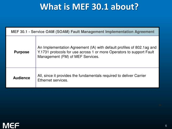 What is MEF 30.1 about?