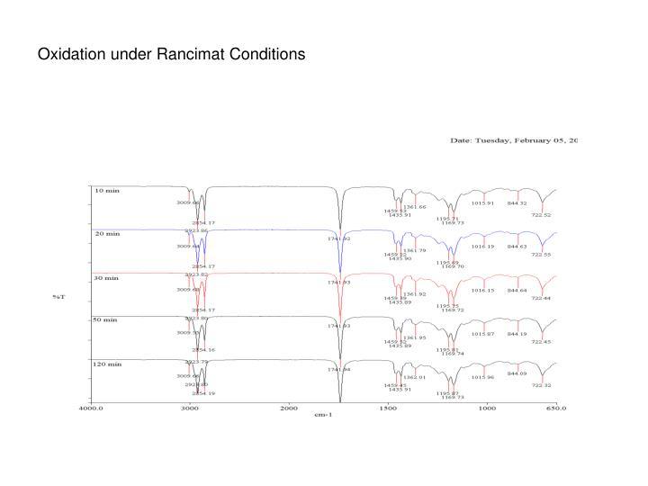 Oxidation under Rancimat Conditions