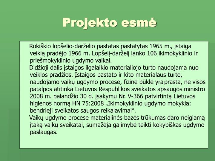 Projekto esmė