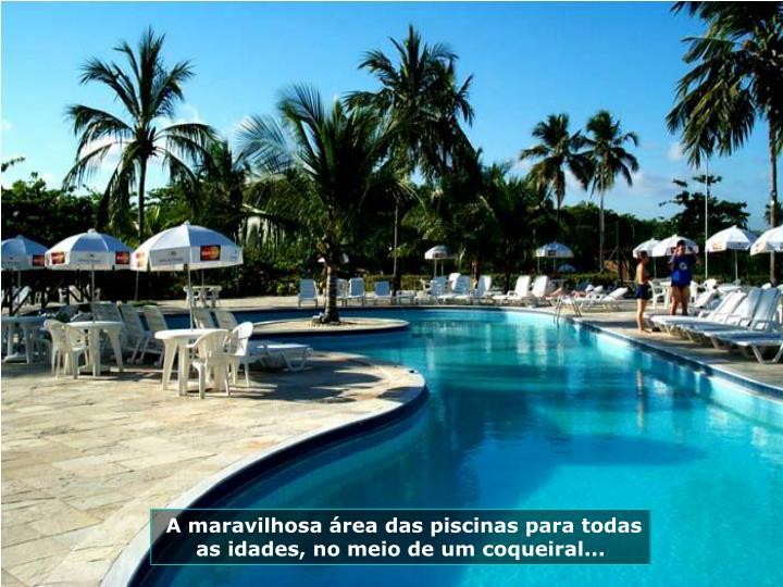 A maravilhosa rea das piscinas para todas as idades, no meio de um coqueiral...