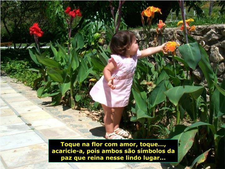 Toque na flor com amor, toque..., acaricie-a, pois ambos so smbolos da paz que reina nesse lindo lugar...