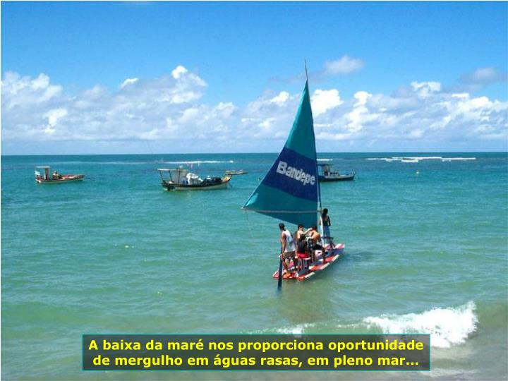 A baixa da mar nos proporciona oportunidade de mergulho em guas rasas, em pleno mar...