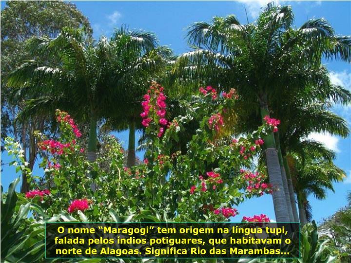 O nome Maragogi tem origem na lngua tupi, falada pelos ndios potiguares, que habitavam o norte de Alagoas. Significa Rio das Marambas...