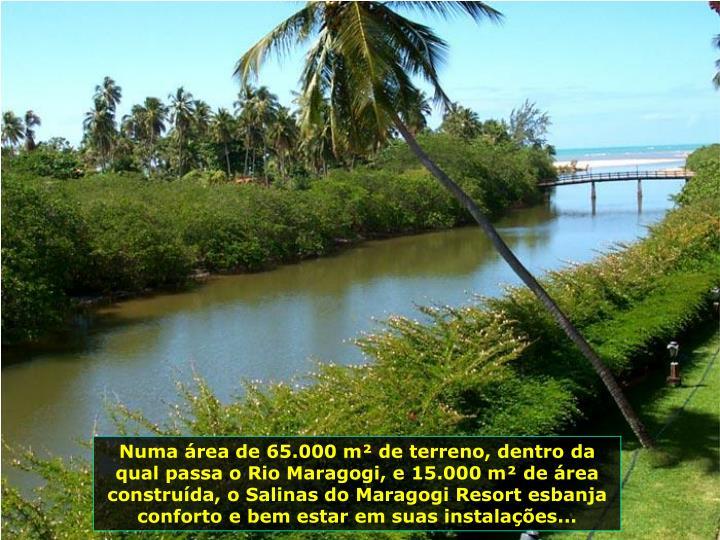 Numa rea de 65.000 m de terreno, dentro da qual passa o Rio Maragogi, e 15.000 m de rea construda, o Salinas do Maragogi Resort esbanja conforto e bem estar em suas instalaes...