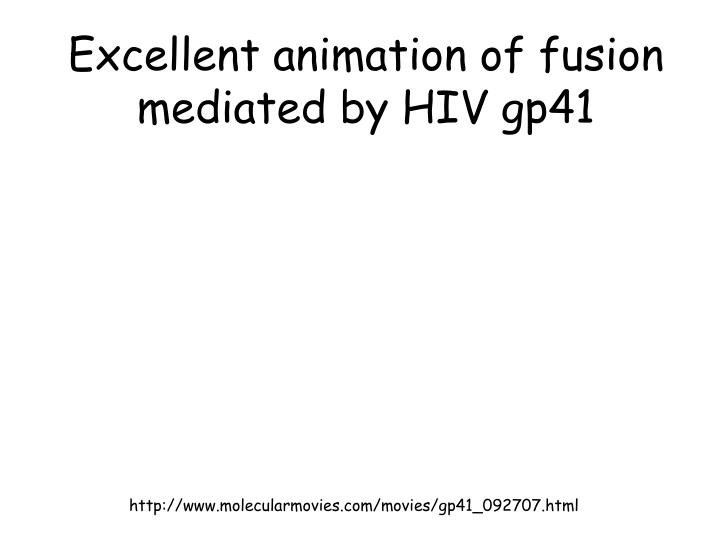 Excellent animation of fusion mediated by HIV gp41