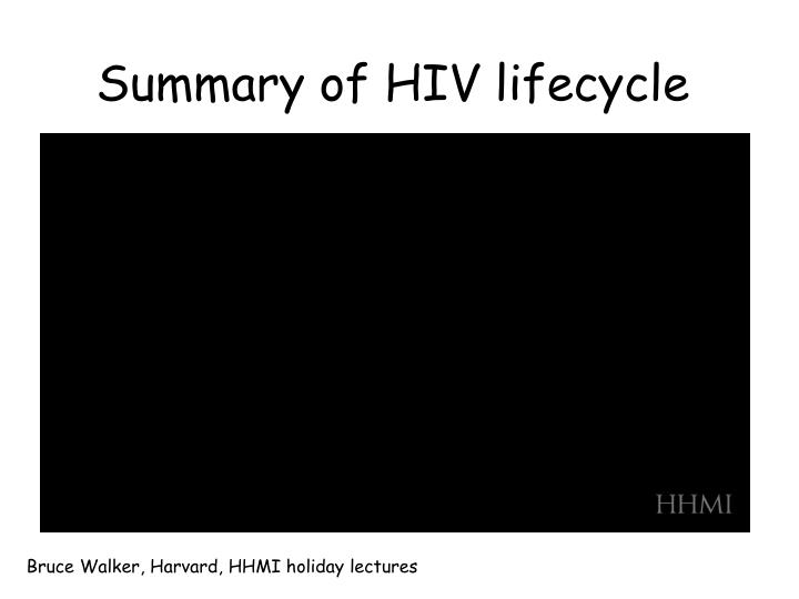 Summary of HIV lifecycle