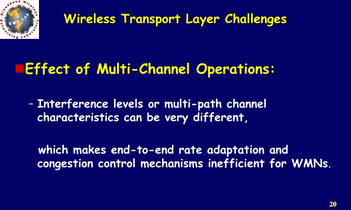 Wireless Transport Layer Challenges