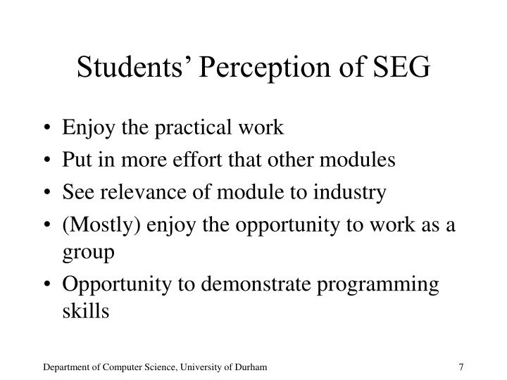 Students' Perception of SEG