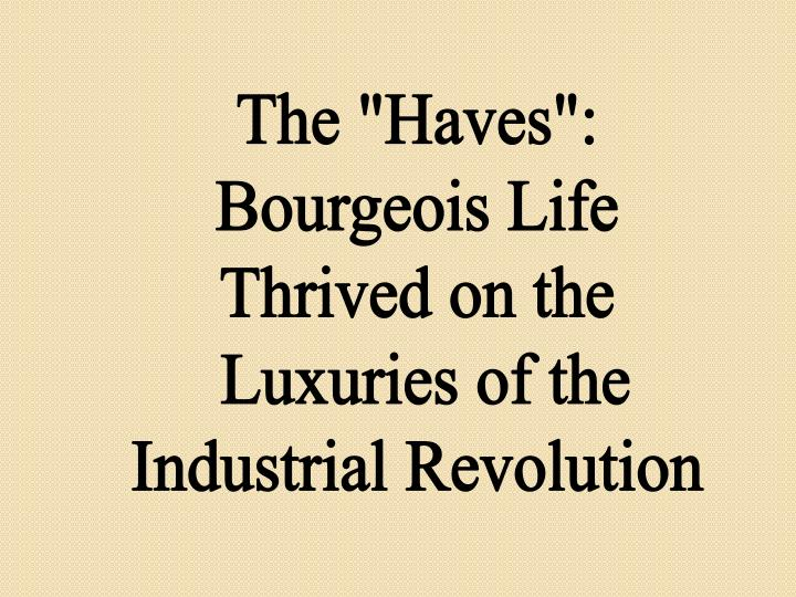 "The ""Haves"":"