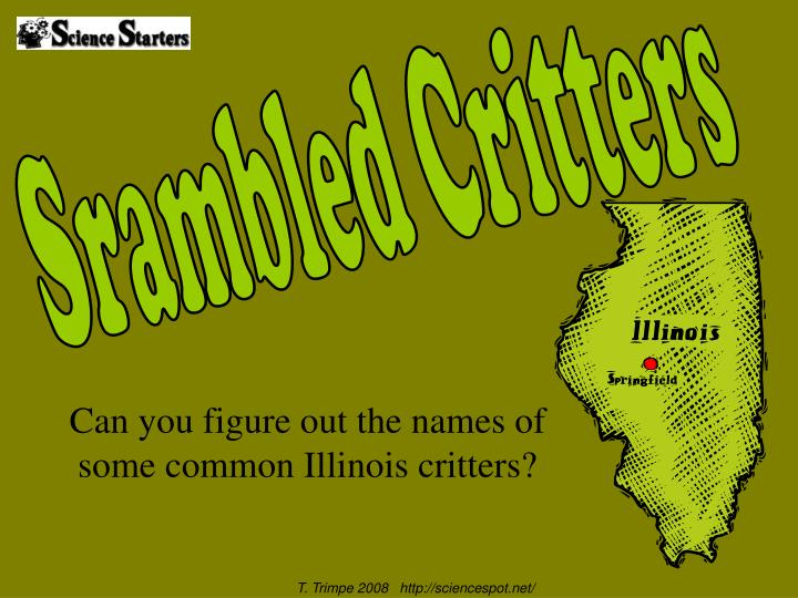 Can you figure out the names of some common illinois critters