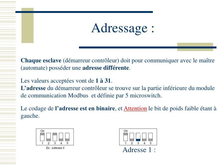 Adresse 1 :