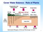 cover water balance role of plants