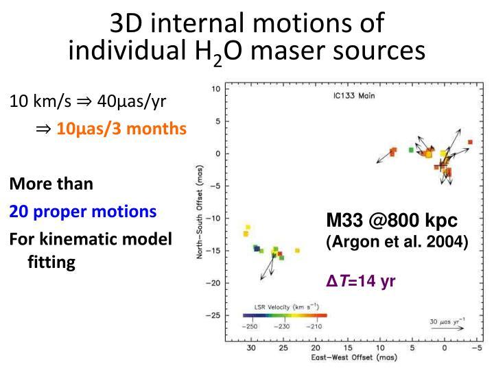 3D internal motions of