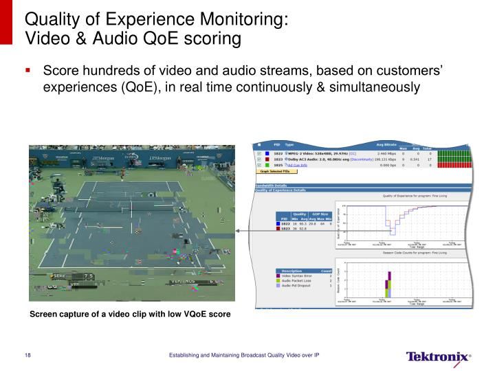 Quality of Experience Monitoring: