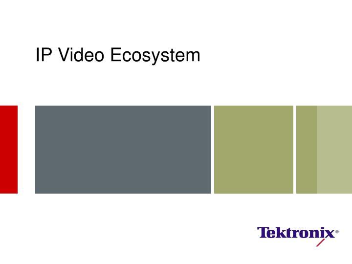 IP Video Ecosystem