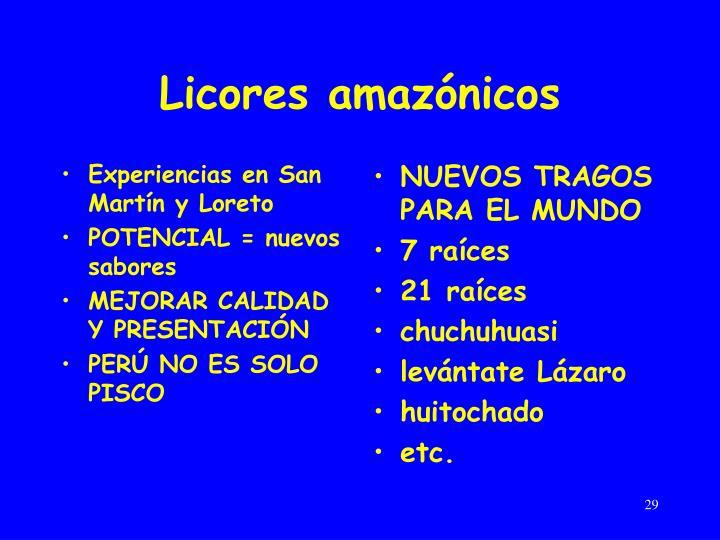 Experiencias en San Martín y Loreto