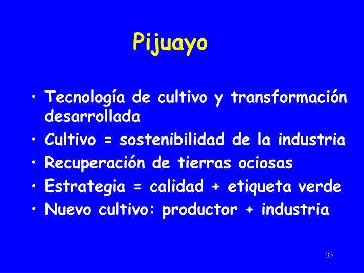 Pijuayo