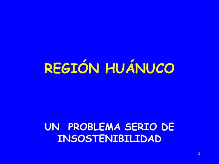 REGIÓN HUÁNUCO