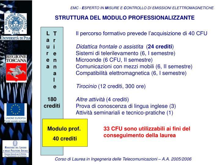 STRUTTURA DEL MODULO PROFESSIONALIZZANTE