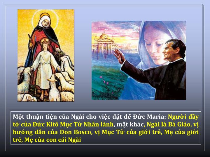 Mt thun tin ca Ngi cho vic t  c Maria: