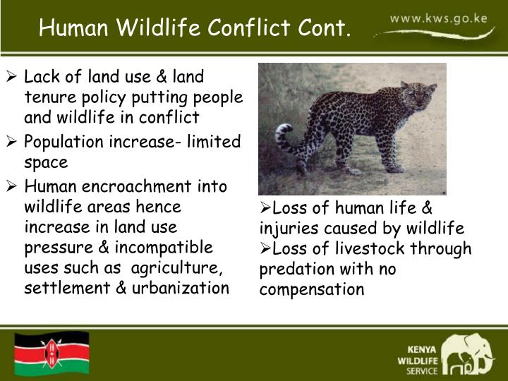 Lack of land use & land tenure policy putting people and wildlife in conflict