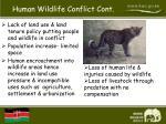 human wildlife conflict cont