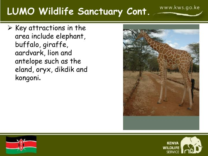 Key attractions in the area include elephant, buffalo, giraffe, aardvark, lion and antelope such as the eland, oryx, dikdik and kongoni