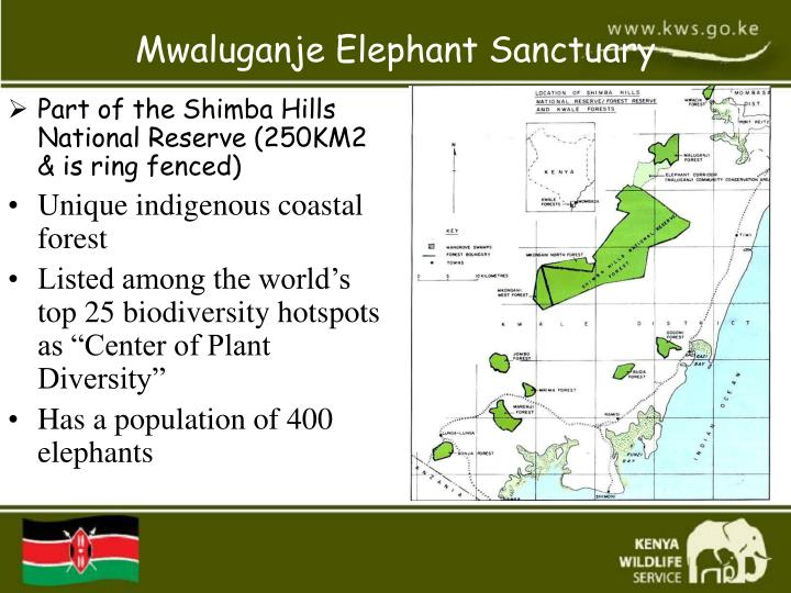 Part of the Shimba Hills National Reserve (250KM2 & is ring fenced)