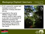 mwaluganje elephant sanctuary1