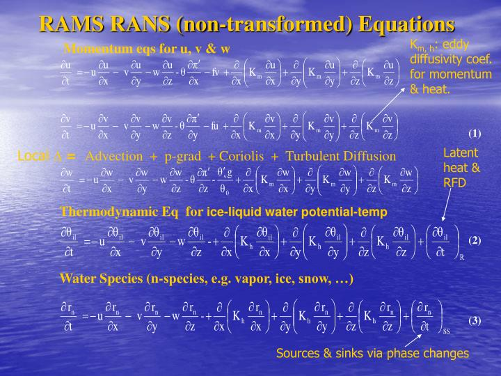 RAMS RANS (non-transformed) Equations