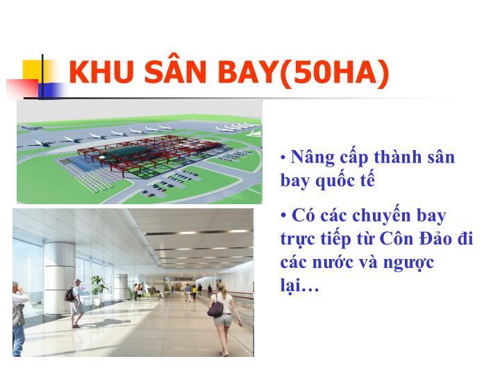 KHU SÂN BAY(50HA)
