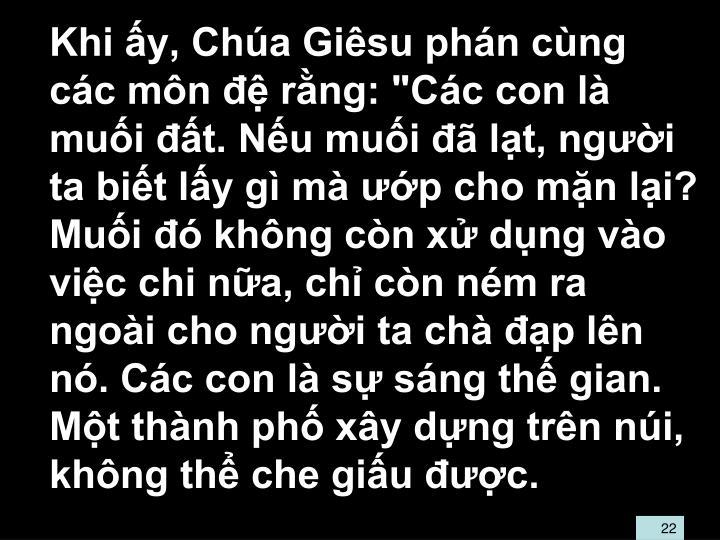 """Khi y, Cha Gisu phn cng cc mn  rng: """"Cc con l mui t. Nu mui  lt, ngi ta bit ly g m p cho mn li? Mui  khng cn x dng vo vic chi na, ch cn nm ra ngoi cho ngi ta ch p ln n. Cc con l s sng th gian. Mt thnh ph xy dng trn ni, khng th che giu c."""