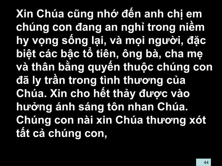 Xin Cha cng nh n anh ch em chng con