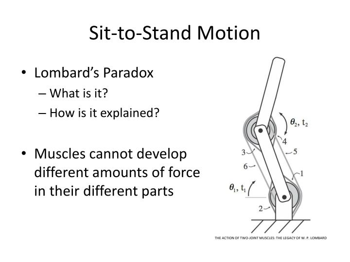 Sit-to-Stand Motion