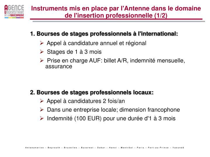 Instruments mis en place par l'Antenne dans le domaine de l'insertion professionnelle (1/2)