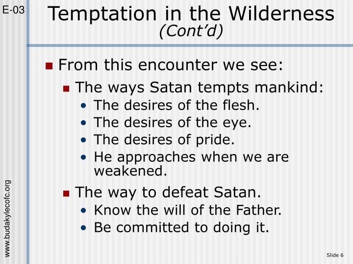 Temptation in the Wilderness