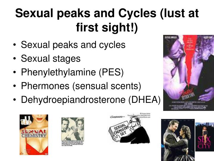 Sexual peaks and Cycles (lust at first sight!)