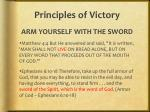 principles of victory5