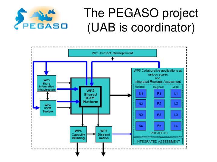 The PEGASO project