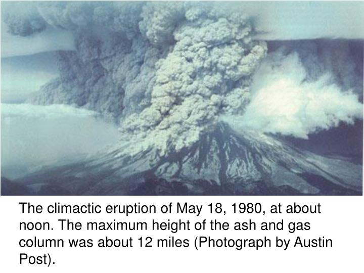 The climactic eruption of May 18, 1980, at about noon. The maximum height of the ash and gas column was about 12 miles (Photograph by Austin Post).
