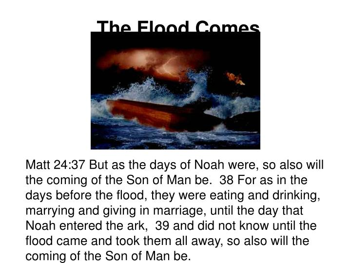 The Flood Comes