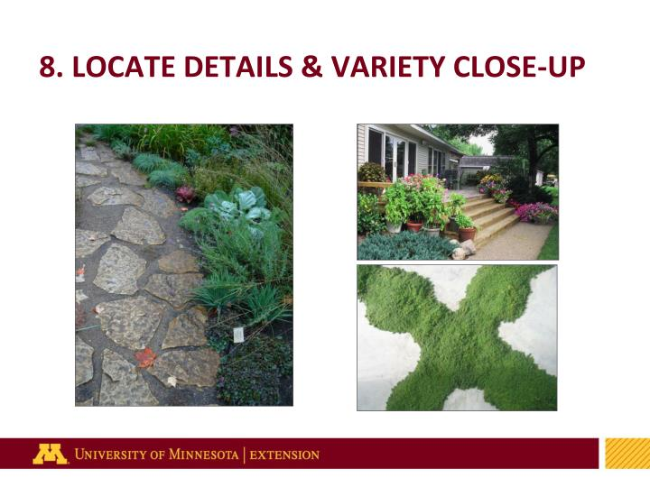 8. LOCATE DETAILS & VARIETY CLOSE-UP