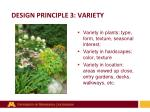 design principle 3 variety