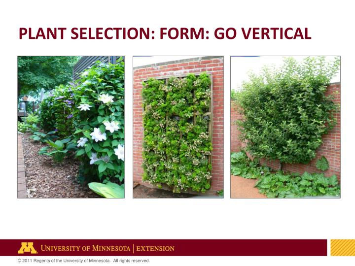 PLANT SELECTION: FORM: GO VERTICAL