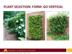 plant selection form go vertical