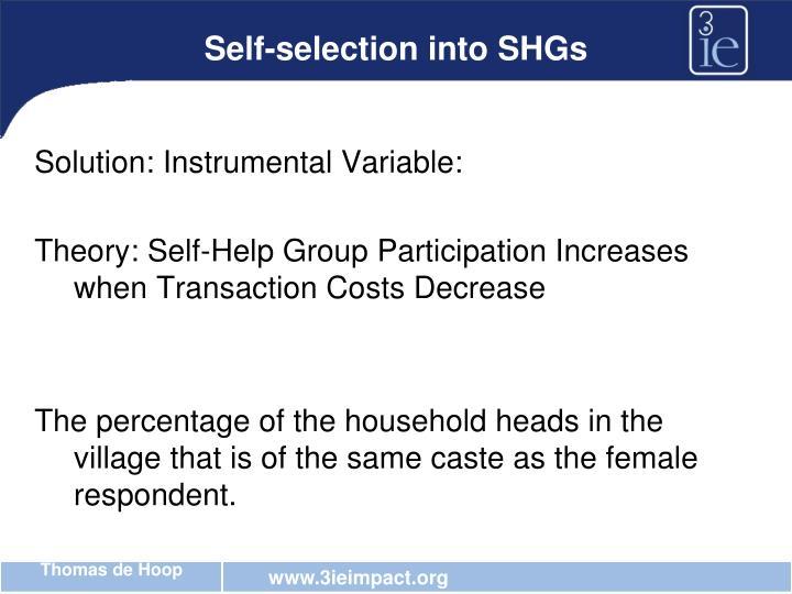 Self-selection into SHGs