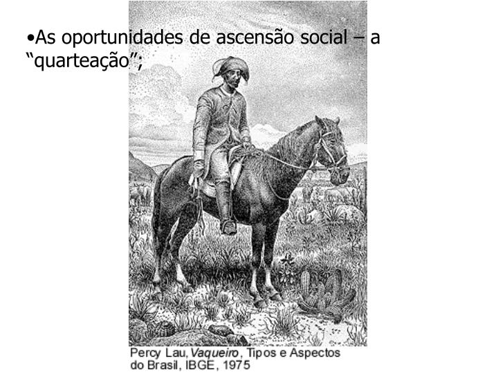 "As oportunidades de ascensão social – a ""quarteação"";"