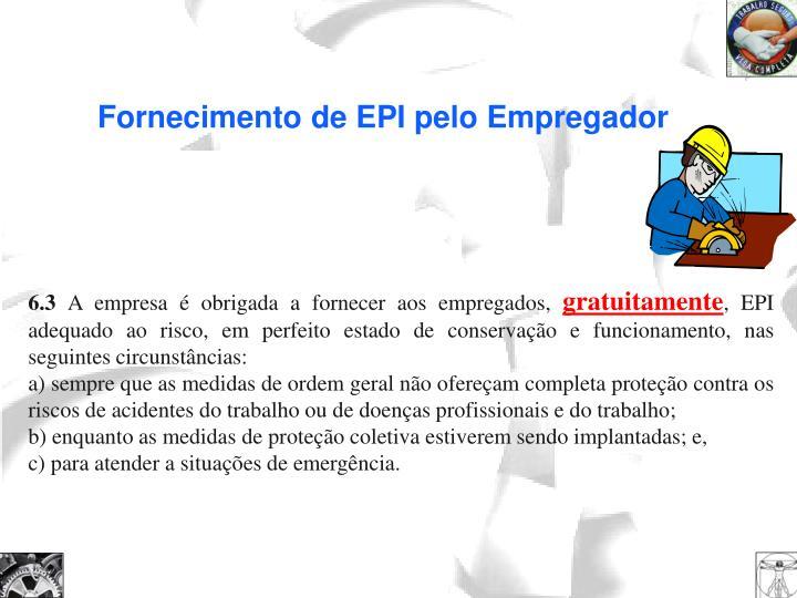 Fornecimento de EPI pelo Empregador