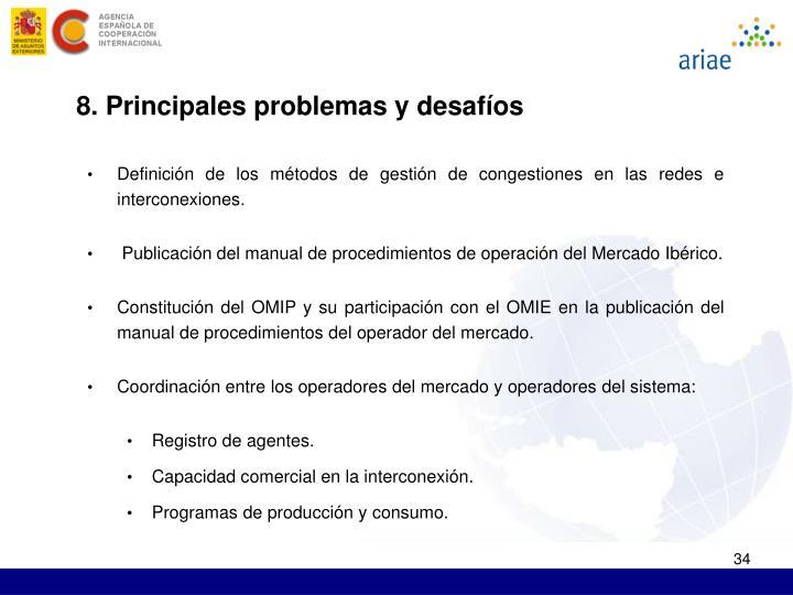 8. Principales problemas y desafíos