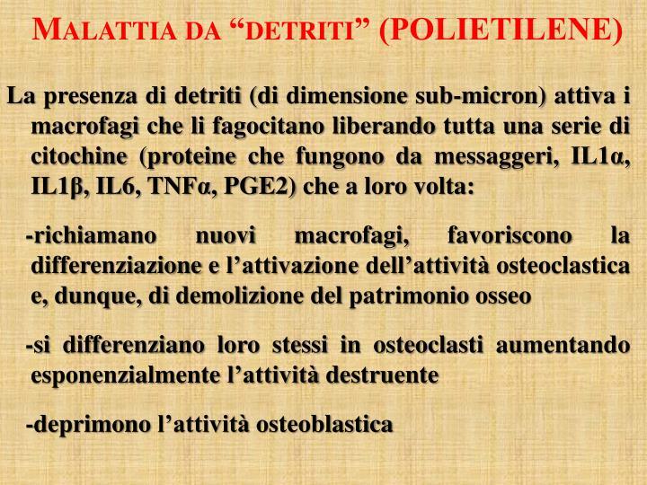 """Malattia da """"detriti"""" (POLIETILENE)"""